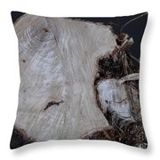 Canal Stumps-026 Throw Pillow