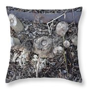 Canal Stumps-027 Scabs Throw Pillow