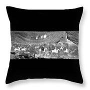 Canyon De Chelley Pictographs Throw Pillow