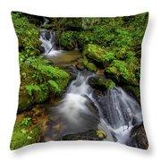 Cascades Of Lee Falls Throw Pillow