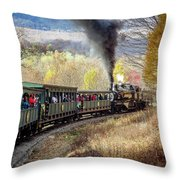 Cass Rr Throw Pillow