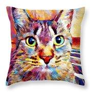 Cat 13 Throw Pillow