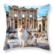 Cat In Front Of The Library Of Celsus Throw Pillow