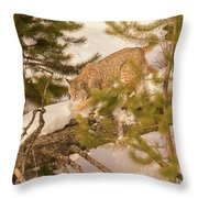 Cat Walk Throw Pillow