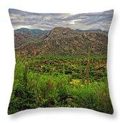Catalina Foothills H1130 Throw Pillow