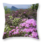 Catawba Rhododendron Table Rock  Throw Pillow