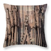Cathedral Chimera Throw Pillow