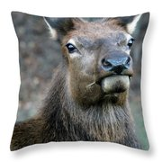 Caught With A Mouthful Throw Pillow