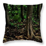 Cedar Trees Throw Pillow