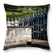 Cemetery Vaults Throw Pillow by Tom Singleton
