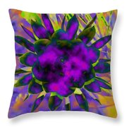 Cereusly Solarized Throw Pillow