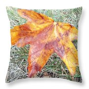 Change Of Seasons  Throw Pillow