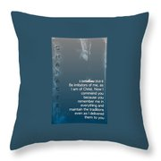 Character 1 11 1 2 Throw Pillow