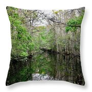 Charlie Bowlegs Creek Throw Pillow
