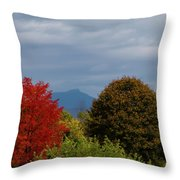 Charlotte Vermont View Of Camels Hump Throw Pillow