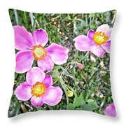 Chateau Montelena Garden 1 Throw Pillow