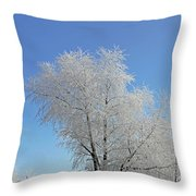 Cherohala Magic Throw Pillow