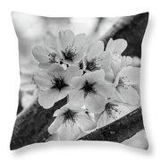 Cherry Blossoms 2019 E Throw Pillow