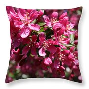 Cherry Blossoms 2019 IIi Throw Pillow