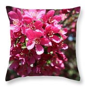 Cherry Blossoms 2019 Iv Throw Pillow