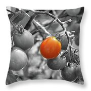 Cherry Tomatoes Partial Color Throw Pillow
