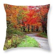 Chikanishing Road In Fall Throw Pillow