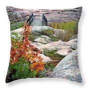 Chikanishing Trail Boardwalk Throw Pillow