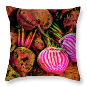 Chioggia Beets Throw Pillow