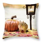 Chipmunk In The Autumn Throw Pillow