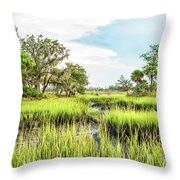 Chisolm Island - Marsh At Low Tide Throw Pillow