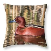 Cinnamon Teal On The Pond Throw Pillow