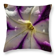 Circle Of Purple Throw Pillow