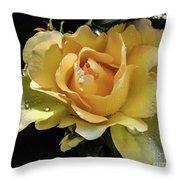 Classy Struck Gold Throw Pillow