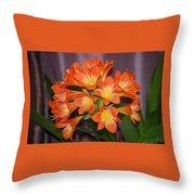 Clivia Blossoms Throw Pillow