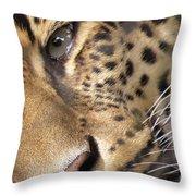 Close-up Throw Pillow