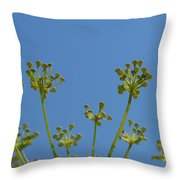 Close Up Of Fennel Flowers. On Sky Background Throw Pillow