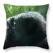 Close-up Of Frowning Adult Mountain Gorilla Throw Pillow