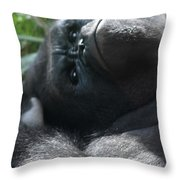 Close-up Shot Of Silverback Gorilla Making An Angry Face Throw Pillow