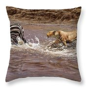 Closing In - Lion Chasing A Zebra Throw Pillow by Alan M Hunt