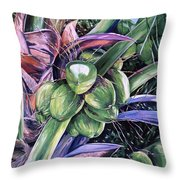 Coconuts   14x26 Throw Pillow