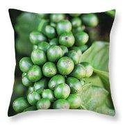 Coffee Berries Throw Pillow