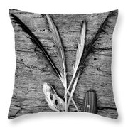 Collections Throw Pillow by Jeni Gray