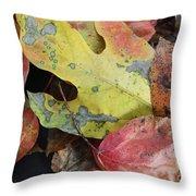 Collective Autumn Color Throw Pillow