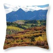 Colorado Color Bonanza Throw Pillow