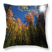 Colorado Gold Throw Pillow