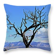 Colorado National Monument Colorado Blue Sky Red Rocks Clouds Trees 2 10212018 2842.jpg Throw Pillow