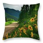 Colorado Wildflowers Throw Pillow by John De Bord