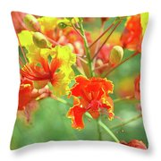 Colorful Morning Throw Pillow