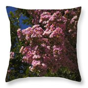 Colors In The Neighborhood 1 Throw Pillow