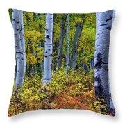 Colors Of October Throw Pillow by John De Bord
